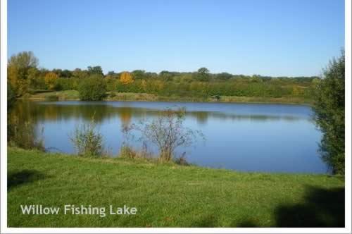 Two peaceful coarse fishing lakes with carp bream perch for Lakes to fish near me